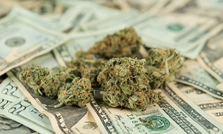 These States Have The Highest Cannabis Sales Taxes In America – The Fresh Toast