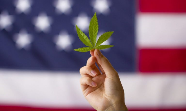 Cannabis Prohibition Is About To End — Does History Have To Repeat Itself? – The Fresh Toast