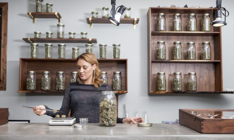 Setting Equal Standards For Women In The Cannabis Industry – The Fresh Toast