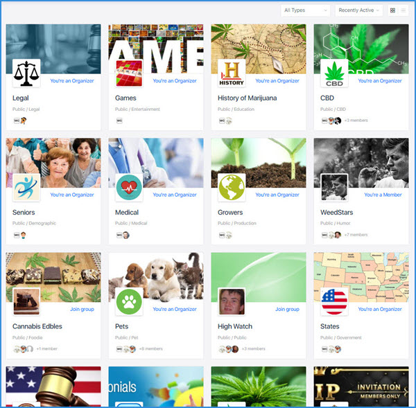 Weedclique Social Media clique CBD Hemp Marijuana Cannabis - Weedclique Groups Groups 600x589