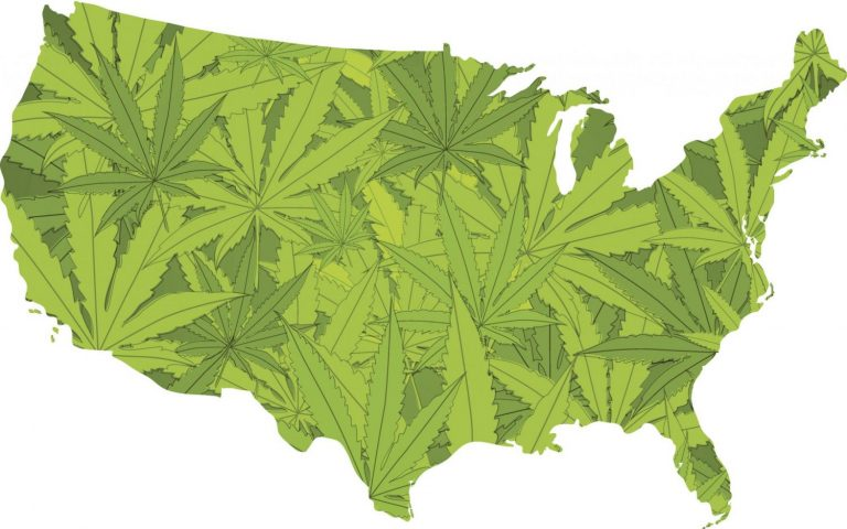 Marijuana Is Bipartisan, But That Doesn't Mean Federal Legalization Is A Sure Thing – The Fresh Toast