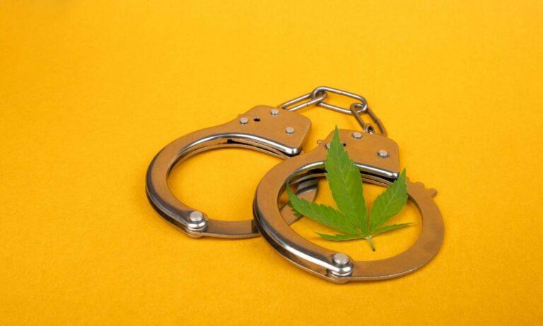 New Program Helps Marijuana Offenders Get Jobs In Legal Market