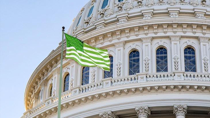 Weedclique us capitol green flag Weekly Legislative Roundup 1/29/21 - NORML
